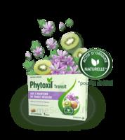 Phytoxil Transit Comprimés B/20 à Trelissac