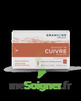 GRANIONS DE CUIVRE 0,3 mg/2 ml S buv 30Amp/2ml à Trelissac