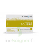 GRANIONS DE SOUFRE 19,5 mg/2 ml S buv 30Amp/2ml à Trelissac