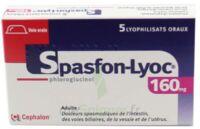SPASFON LYOC 160 mg, lyophilisat oral à Trelissac