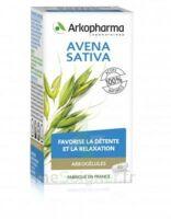Arkogélules Avena Sativa Gélules Fl/45 à Trelissac