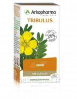 Arkogélules Tribulus Gélules Fl/45 à Trelissac