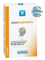 Ergyfosforyl Caps B/60 à Trelissac