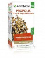 Arkogélules Propolis Bio Gélules Fl/45 à Trelissac