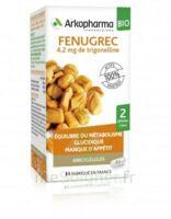 Arkogélules Fenugrec Bio Gélules Fl/40 à Trelissac