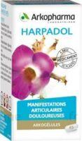 ARKOGELULES HARPAGOPHYTON, 150 gélules à Trelissac