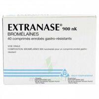 EXTRANASE 900 nK, comprimé enrobé gastro-résistant à Trelissac