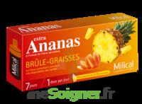 MILICAL ANANAS BRULEUR DE GRAISSE à Trelissac