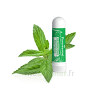 Puressentiel Respiratoire Inhaleur Respiratoire aux 19 Huiles Essentielles - 1 ml à Trelissac