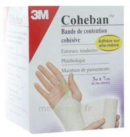 Coheban, Blanc 3 M X 7 Cm à Trelissac
