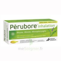 PERUBORE Caps inhalation par vapeur inhalation Plq/15 à Trelissac