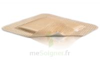 Mepilex Border Pansement hydrocellulaire stérile 10x30cm B/10 à Trelissac