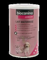 Biocanina Lait poudre maternisé B/400g à Trelissac