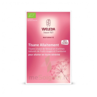 "Weleda Tisane Allaitement ""Fruits rouges"" 2x20g à Trelissac"