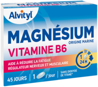 Govital Magnésium Vitamine B6 Comprimés B/45 à Trelissac