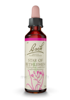 Fleurs De Bach® Original Star Of Bethlehem - 20 Ml à Trelissac