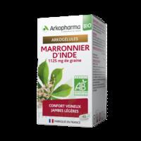 Arkogélules Marronnier D'inde Bio Gélules Fl/45 à Trelissac