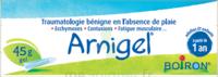Boiron Arnigel Gel T/45g à Trelissac